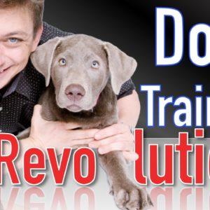 The Future of the Dog Training Revolution
