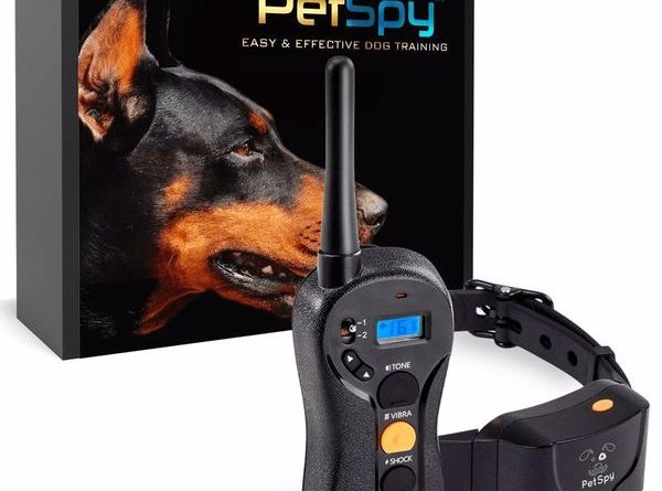 PetSpy P620 Dog Pro Field Training Shock Collar
