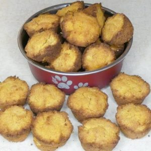 Grain Free Pumpkin Coconut Dog Treats