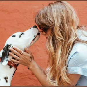 10 Proven Ways Your Dog Says I Love You
