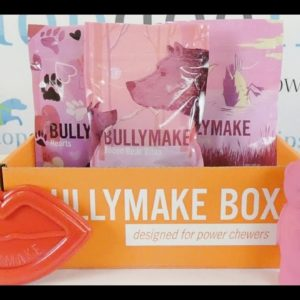 February 2021 Bullymake Box Unboxing