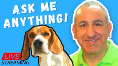 Dog Training Without Treats. Ask Me Anything!