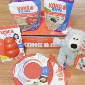 KONG Box Subscription Box Review