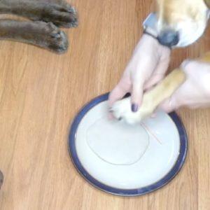 Homemade Dog Paw Print Ornament