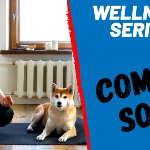 You & Your Dog's Wellness Series Preview
