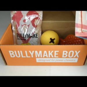 July 2021 Bullymake Box Unboxing