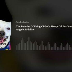Podcast- Cannabis will save the world With Angela Ardolino