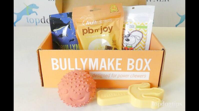 August 2021 Bullymake Box Unboxing