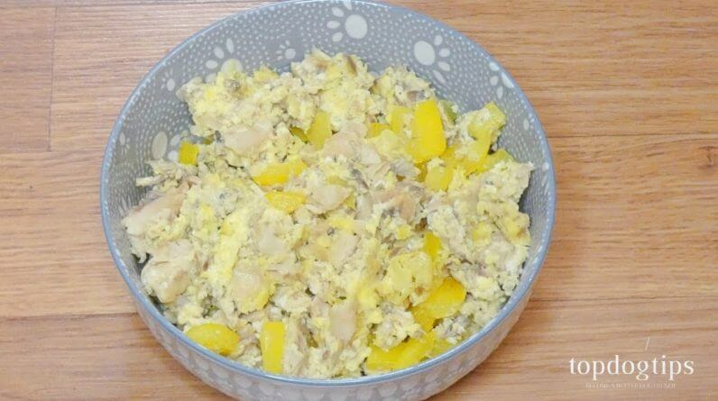 Recipe: Fish and Veggie Omelet for Dogs
