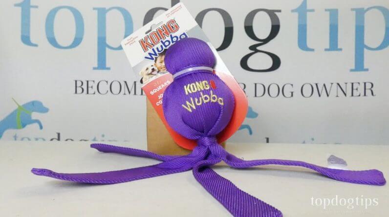 Review: KONG Wubba Dog Toy
