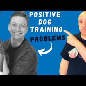 Problem with POSITIVE Dog Training