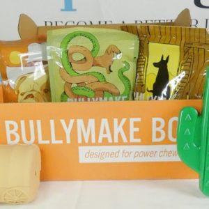 September 2021 Bullymake Box Unboxing